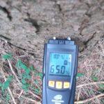Měření vlhkosti smrkového dřeva